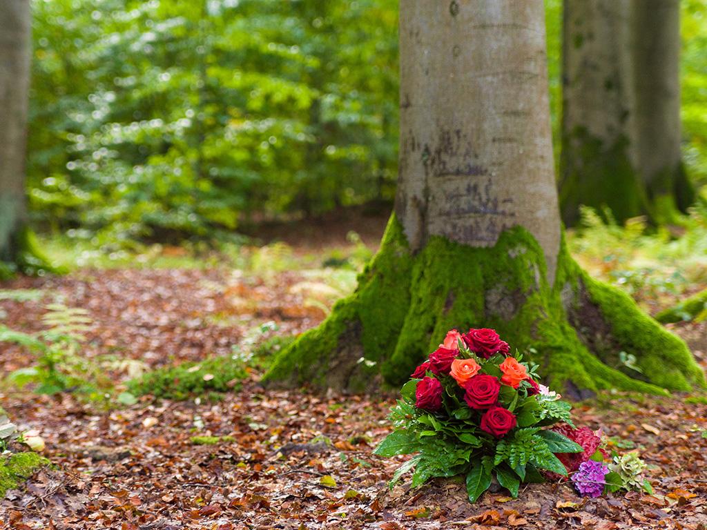Waldbestattung bei End und Blank Bestattungen